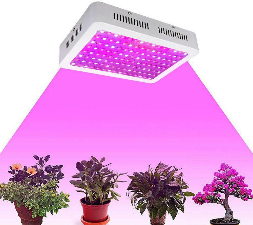ультрафиолетовые лучи разной длины при воздействии на растения
