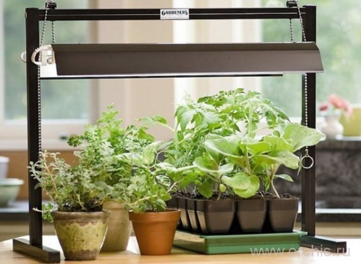 ультрафиолетовые лампы для растений